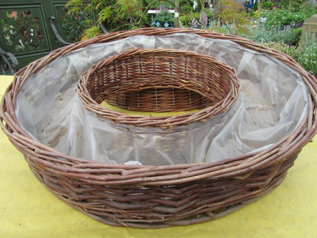 kranz geflochten pflanzen versand f r die besten winterharten balkonpflanzen k belpflanzen. Black Bedroom Furniture Sets. Home Design Ideas