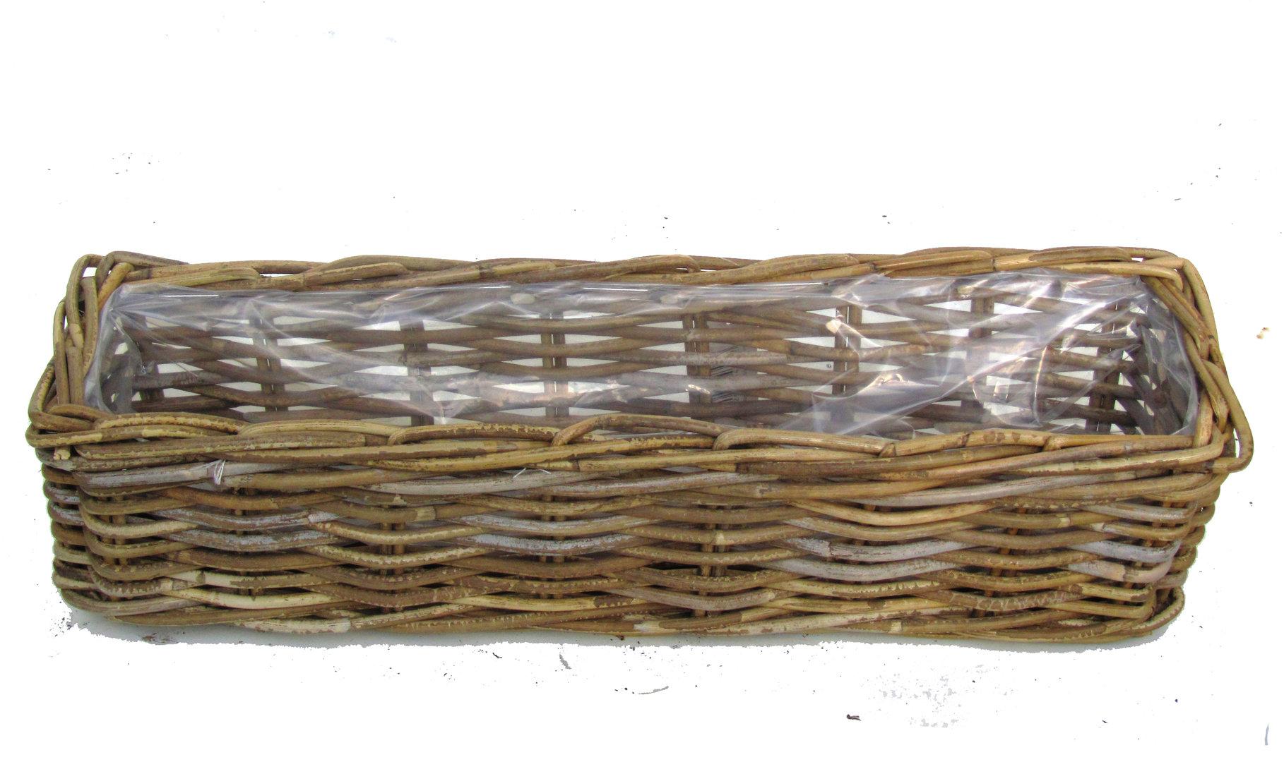 pflanzkorb geflochten eckig 60 cm lang pflanzen versand f r die besten winterharten. Black Bedroom Furniture Sets. Home Design Ideas