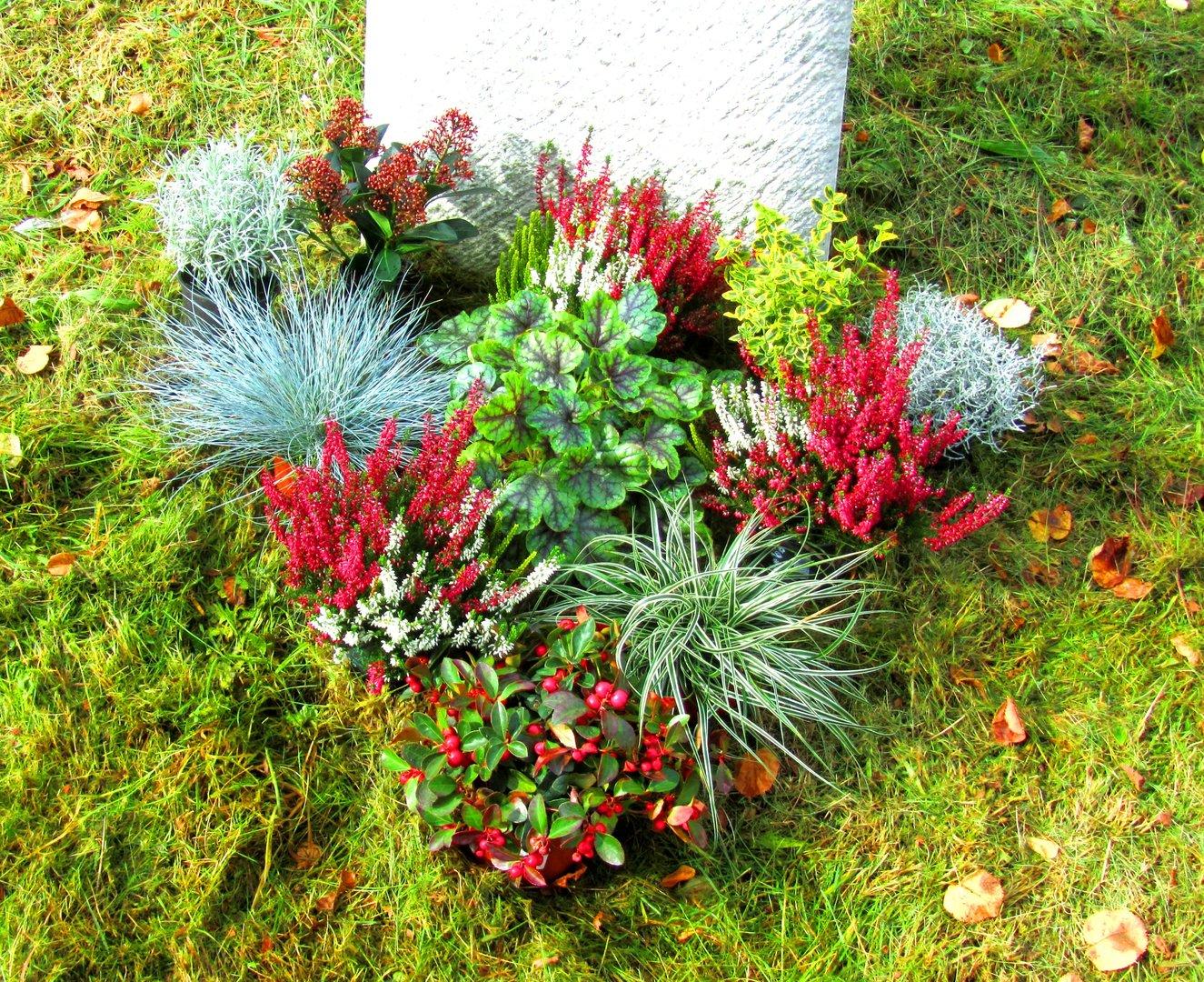 Grabbepflanzung einzelgrab wechselbepflanzung kreativ for Pflanzen bestellen berlin
