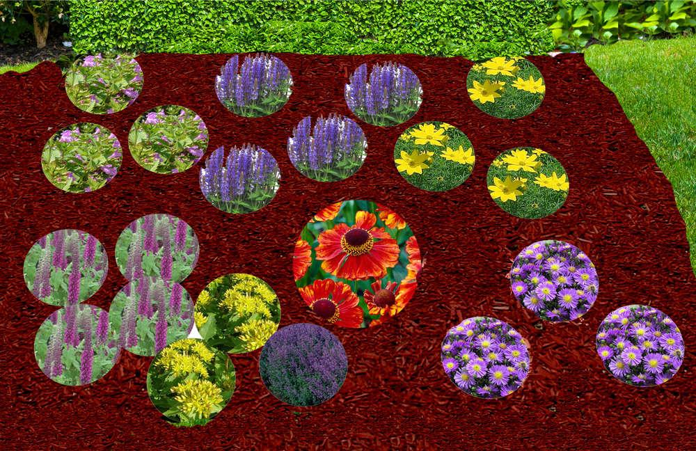 Pflanzenset Staudenbeet Bienen 3 4 M Pflanzen Versand Fur Die